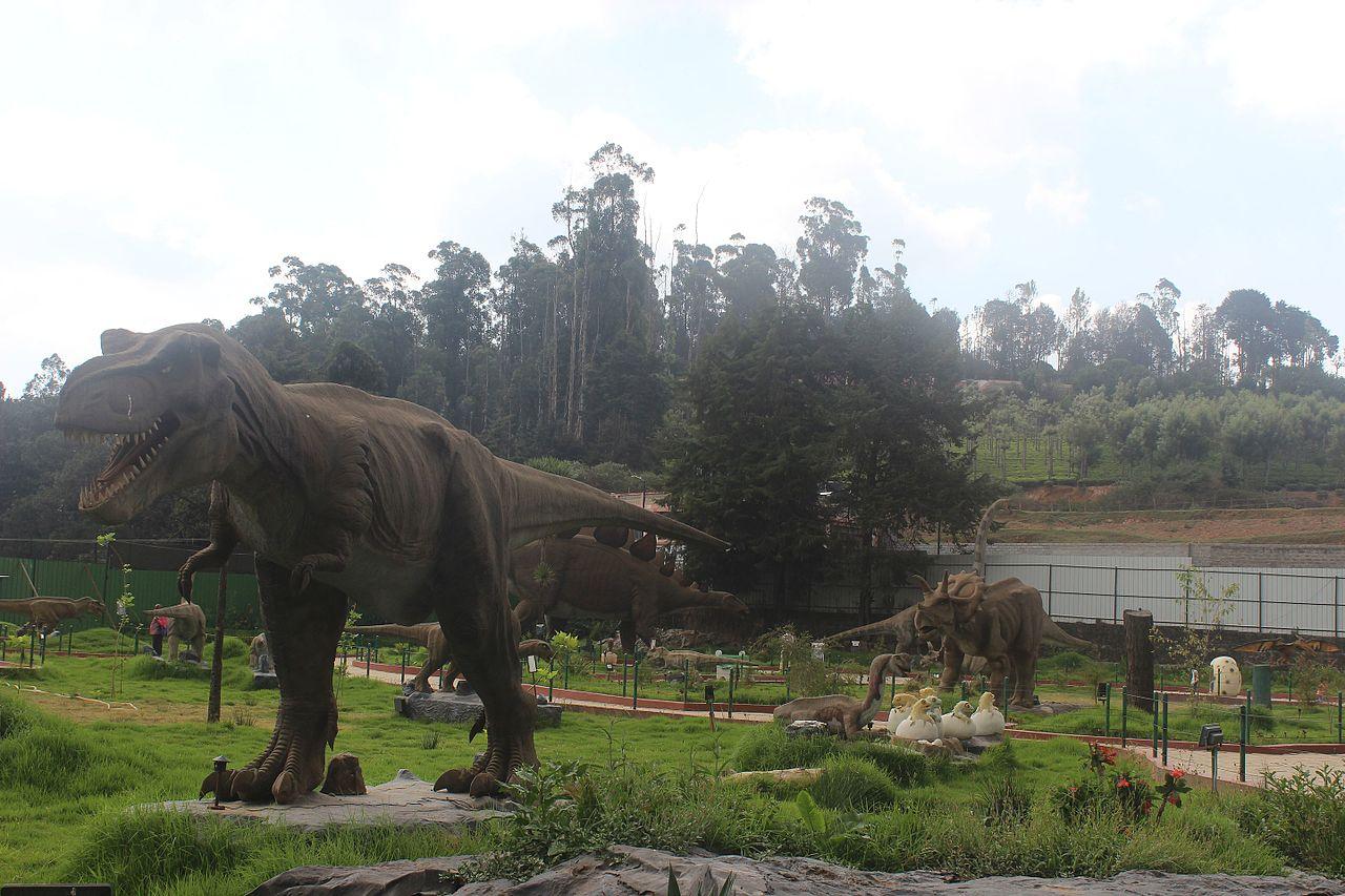 Amusement Park in Ooty, Tamil Nadu-Lake Park