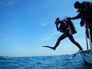 Best Spot for Scuba Diving in Goa