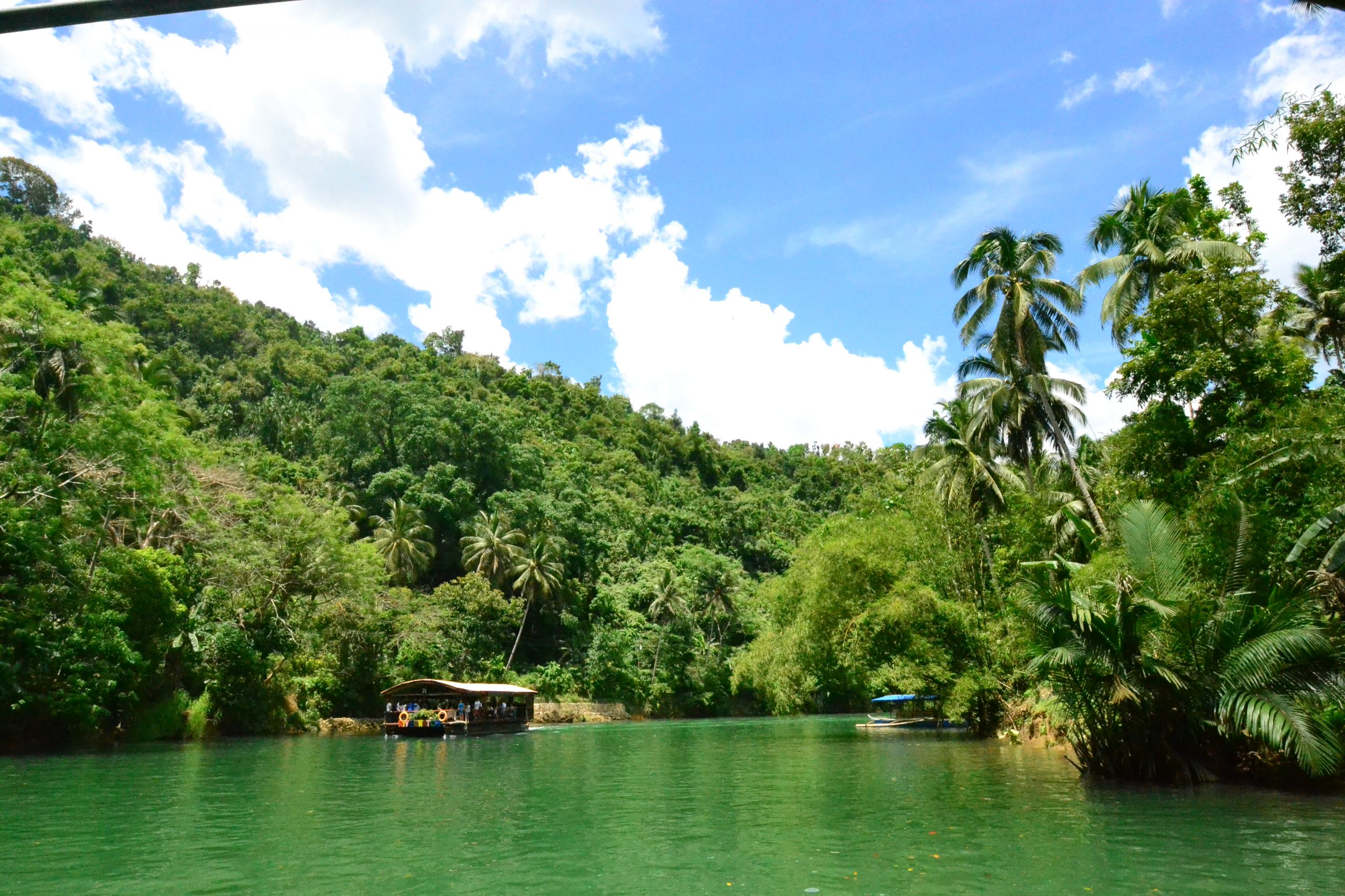 Surround Yourself With Lush Greenery Around the Manjeera Reservoir