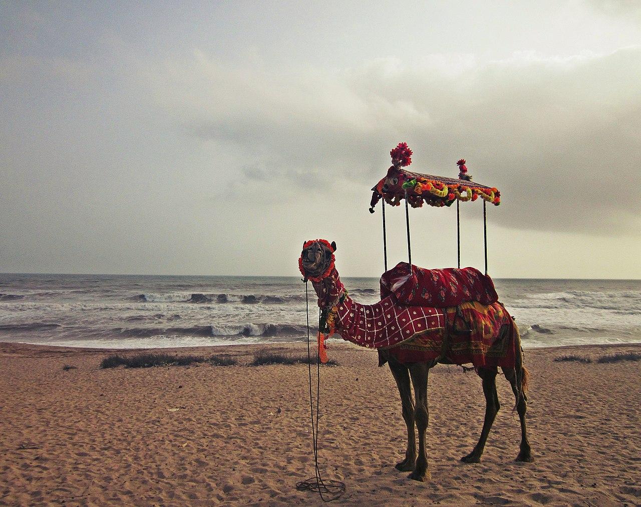 Place to Visit Near Dattatreya Temple-Madhavapur Beach