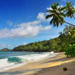Experience Tranquility at These 8 Best Beaches Near Wayanad (Within 150 km)
