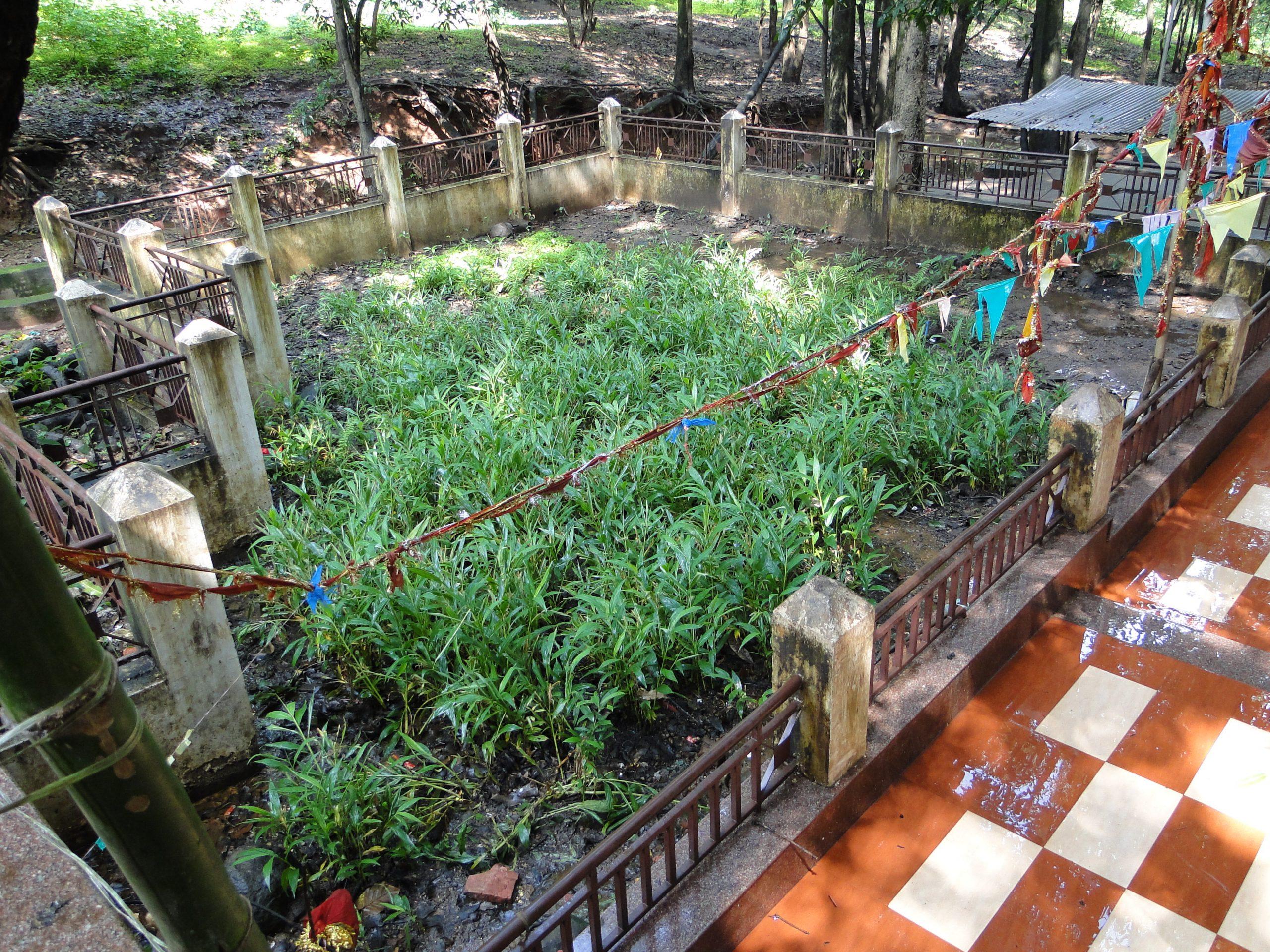 Place to Visit In Amarkantak-Mai ki Bagiya