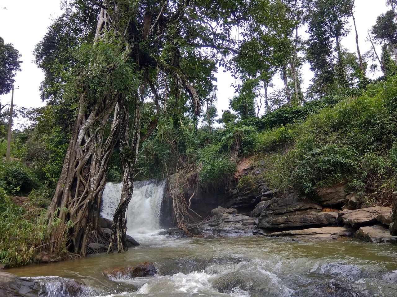 Sightseeing Place To See Near Manjarabad Fort, Sakleshpur-Manjehalli Waterfall