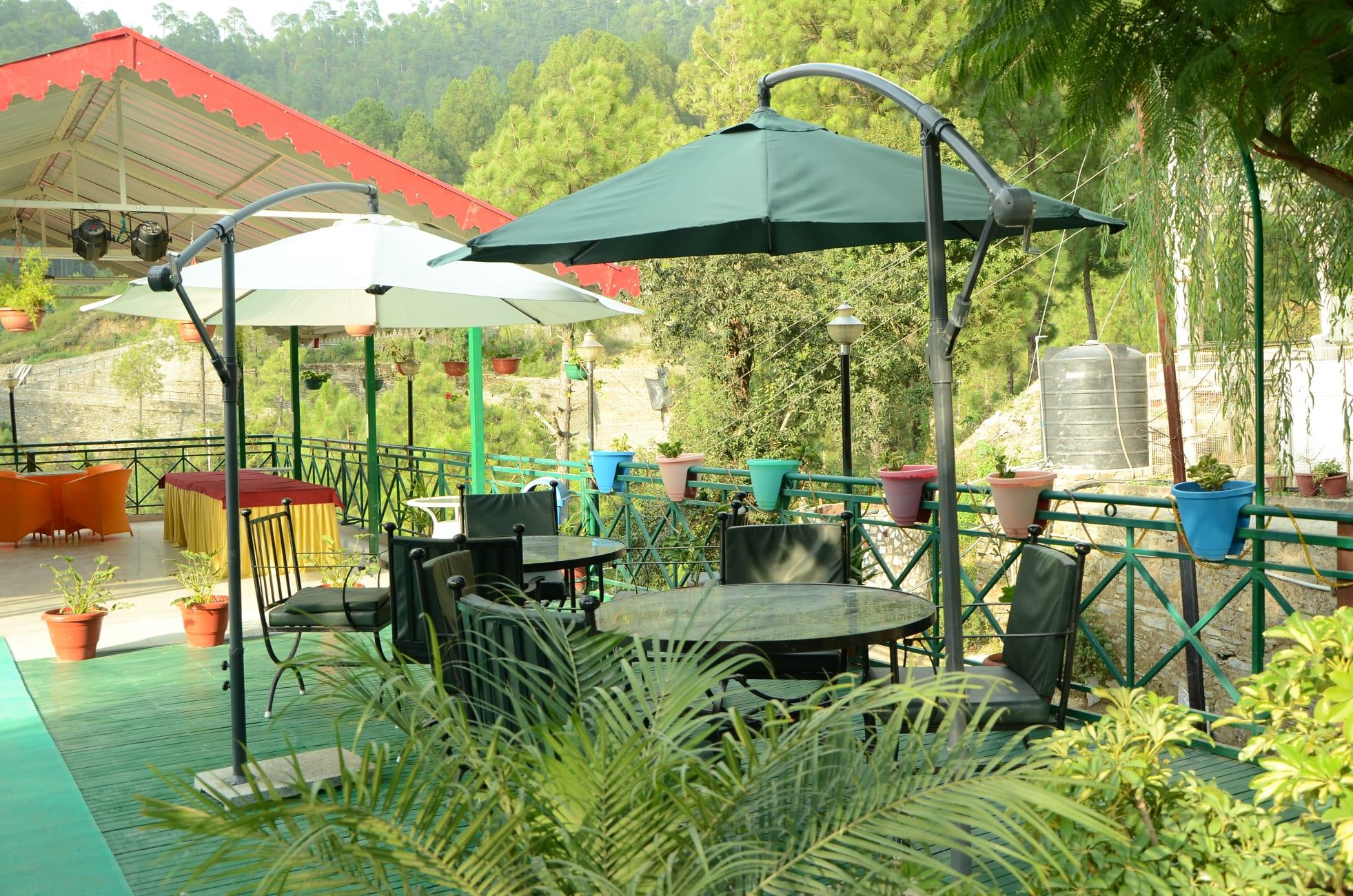 Must-Visit Restaurant in Chail-Maple Restaurant at Maple Resort