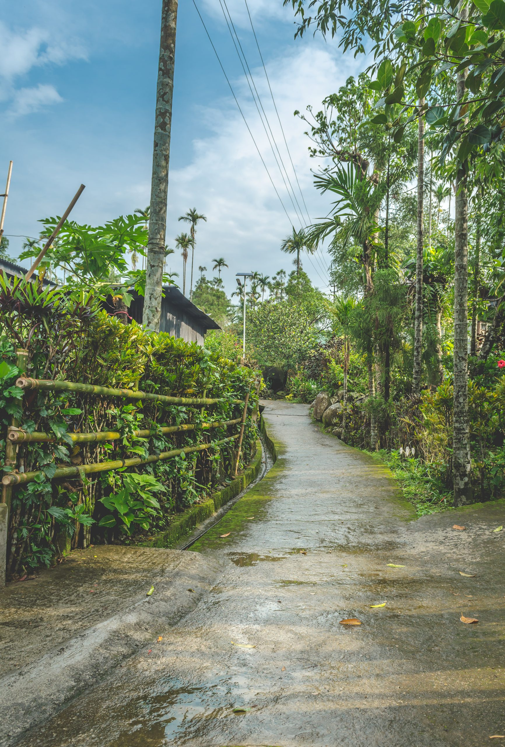 Place To Visit In Meghalaya Which Will Blow Your Minds - Mawlynnong