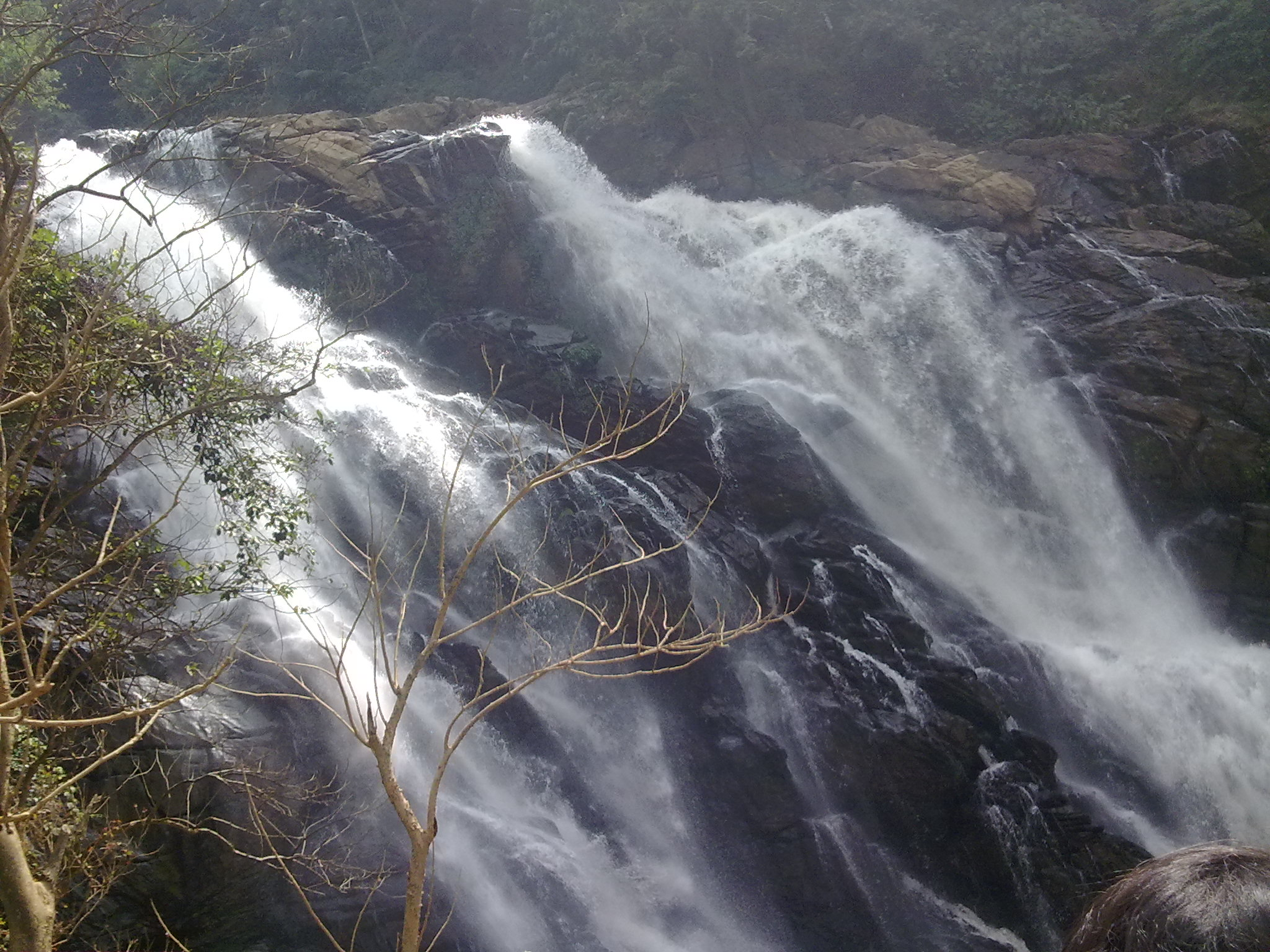 Meenmutty Waterfalls Must-Visit Places During Wayanad Trip