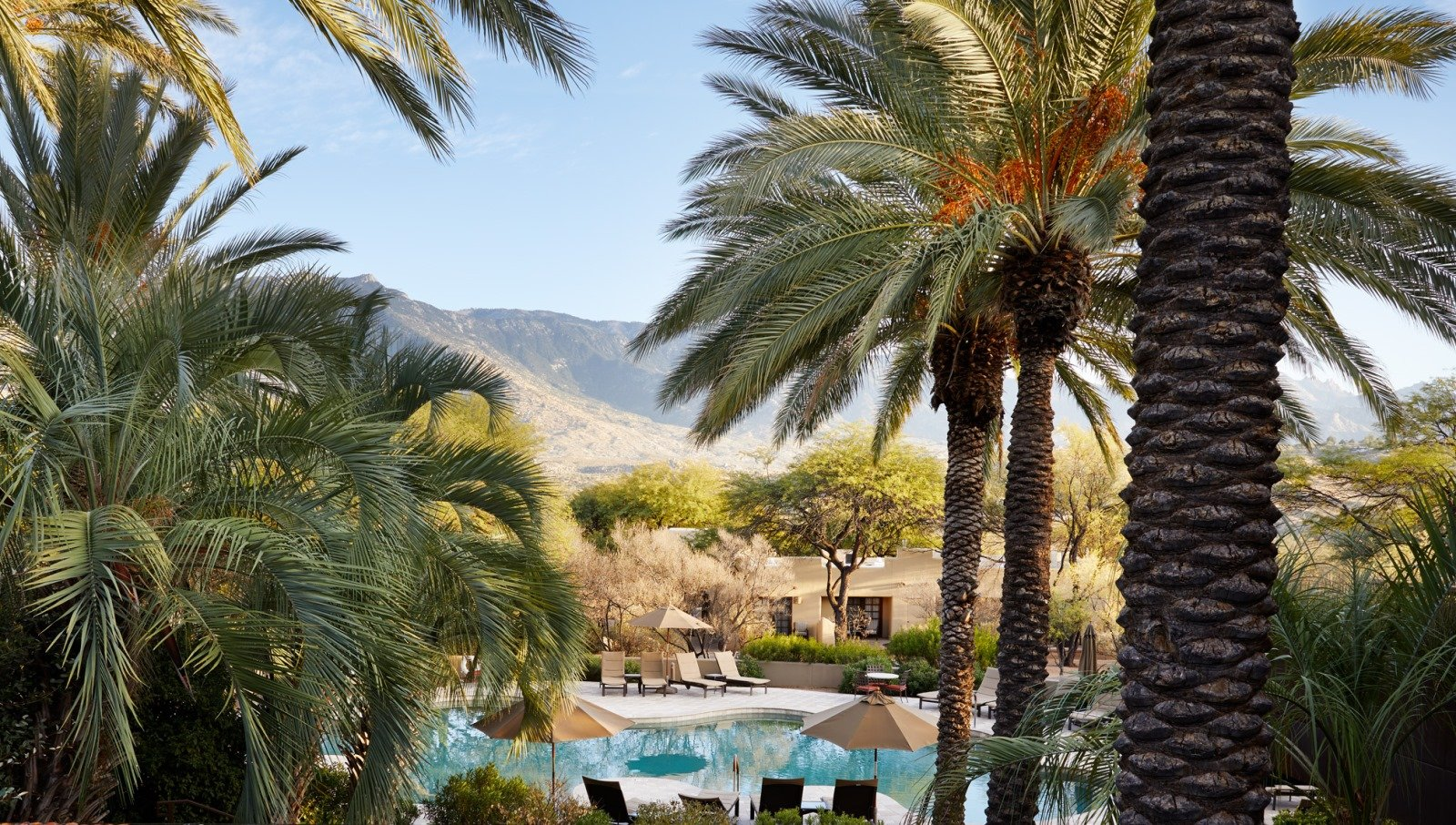 Top 11 Hotels In Tucson