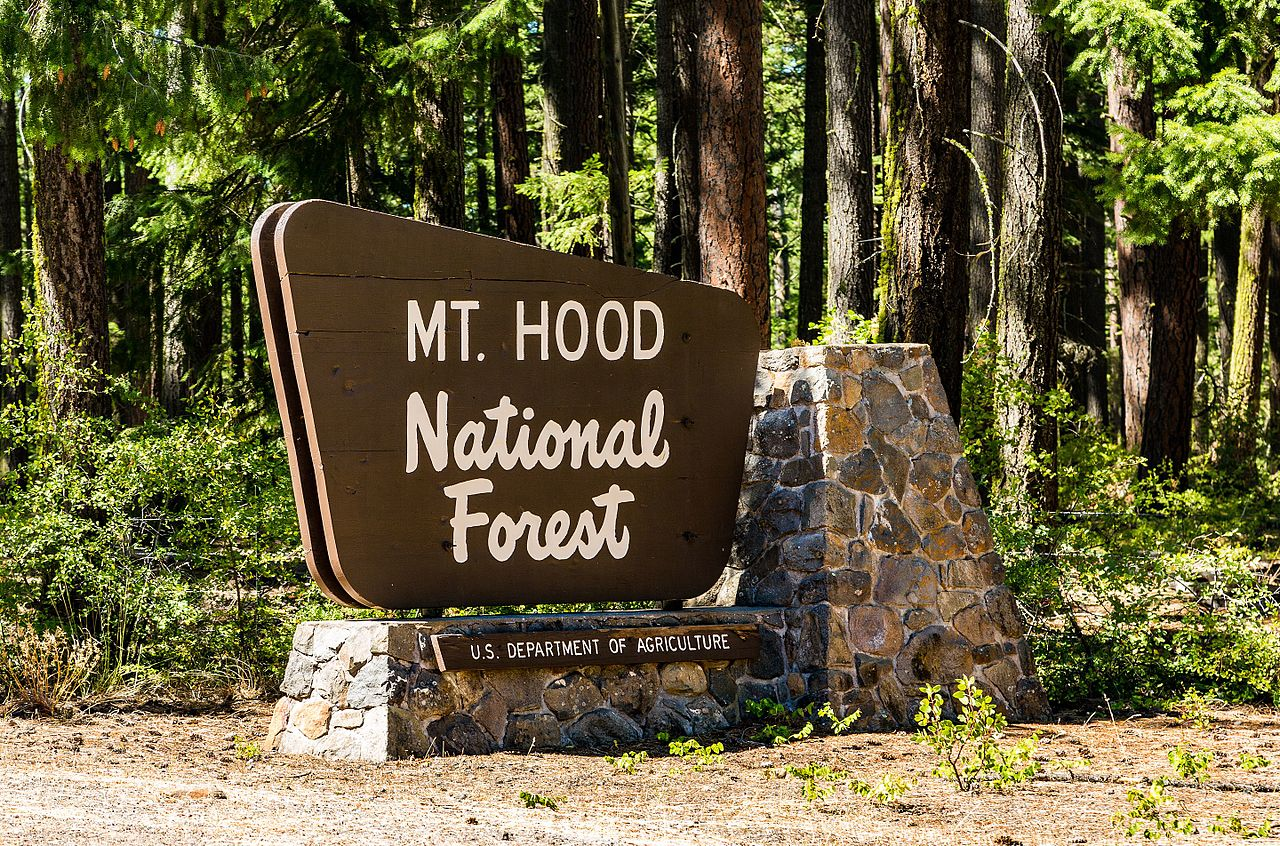 Must-Visit Attraction of Oregon-Mount Hood National Forest