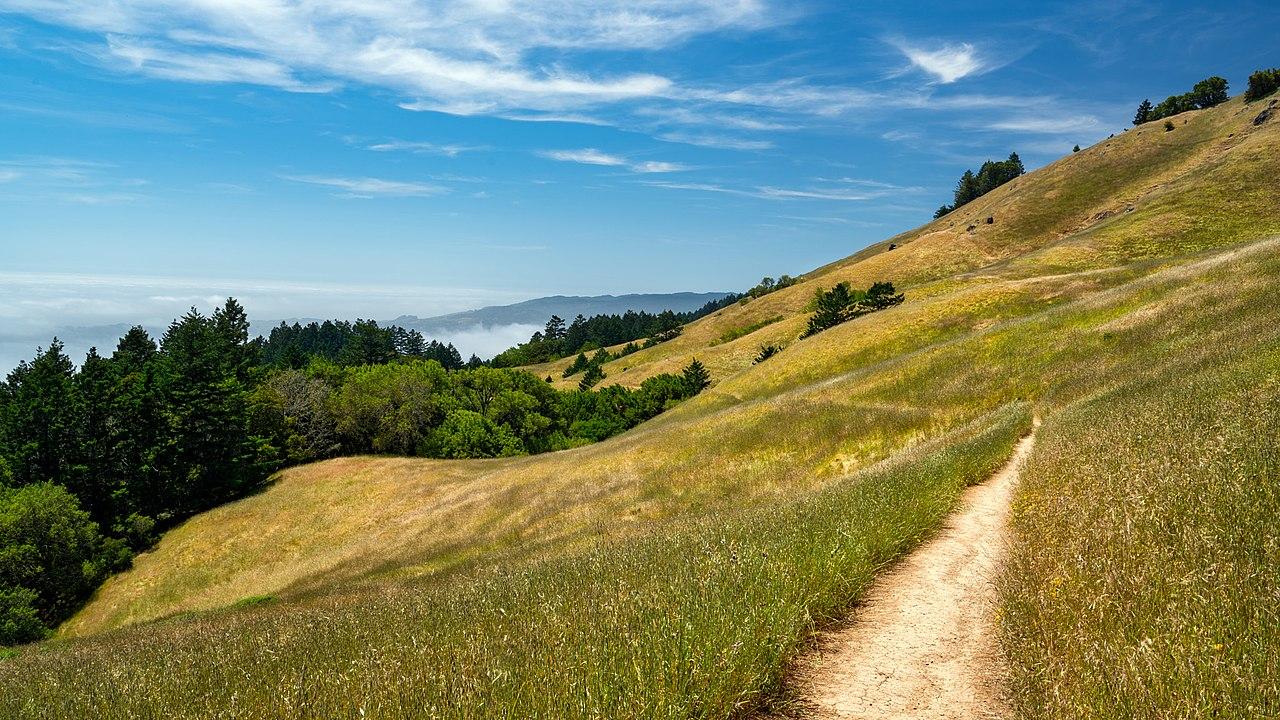 Mount Tamalpais - Hidden Gem In California For a Great Vacation