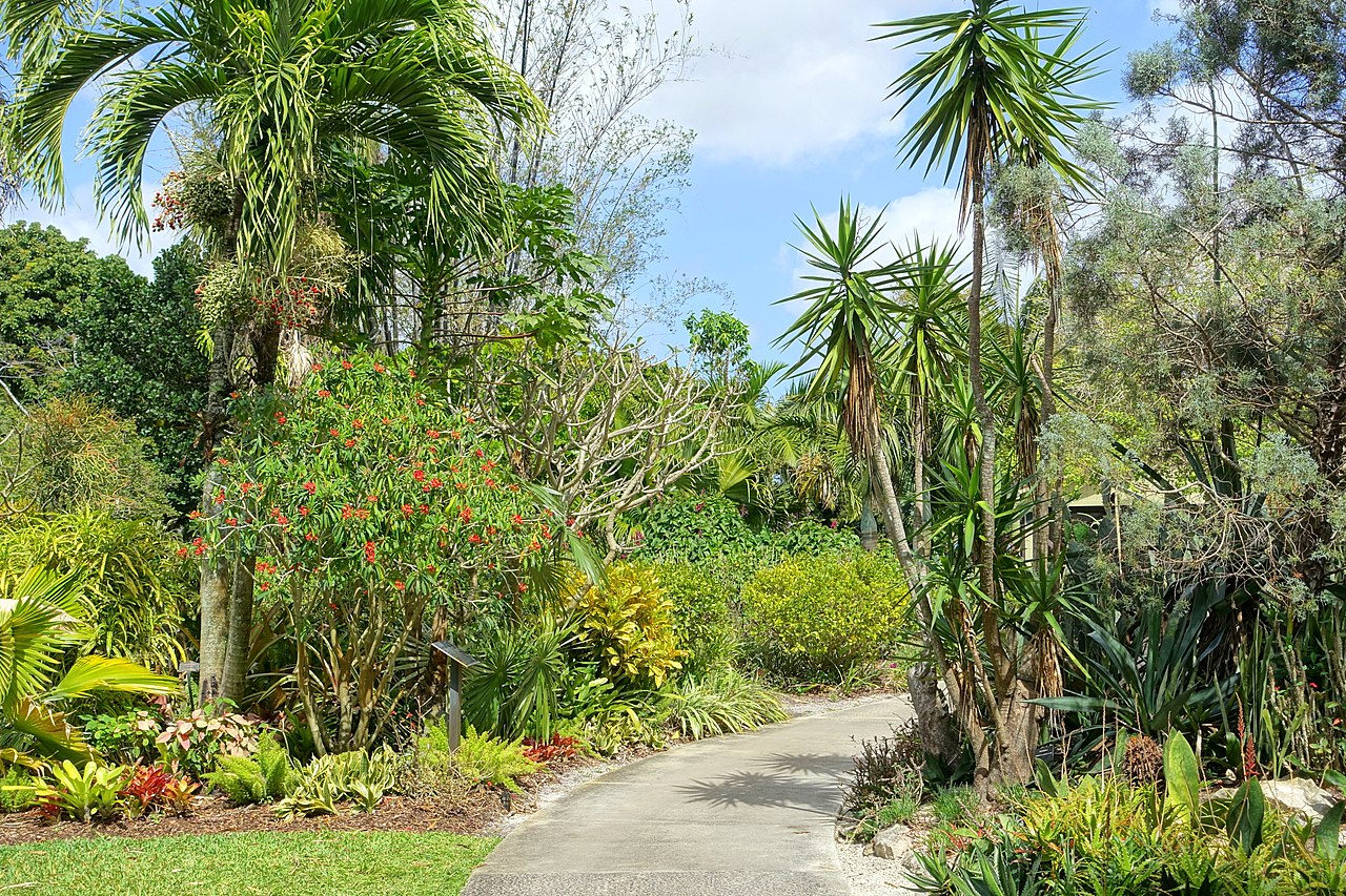 Attraction Place to Visit in West Palm Beach-Mounts Botanical Gardens