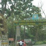 Mudumalai National Park - Top National Park In Tamil Nadu