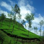 Must-Visit Hill Stations Within 500 kms of Wayanad