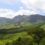 Munnar Tea Plantation - Incredible Hill Station in Kerala