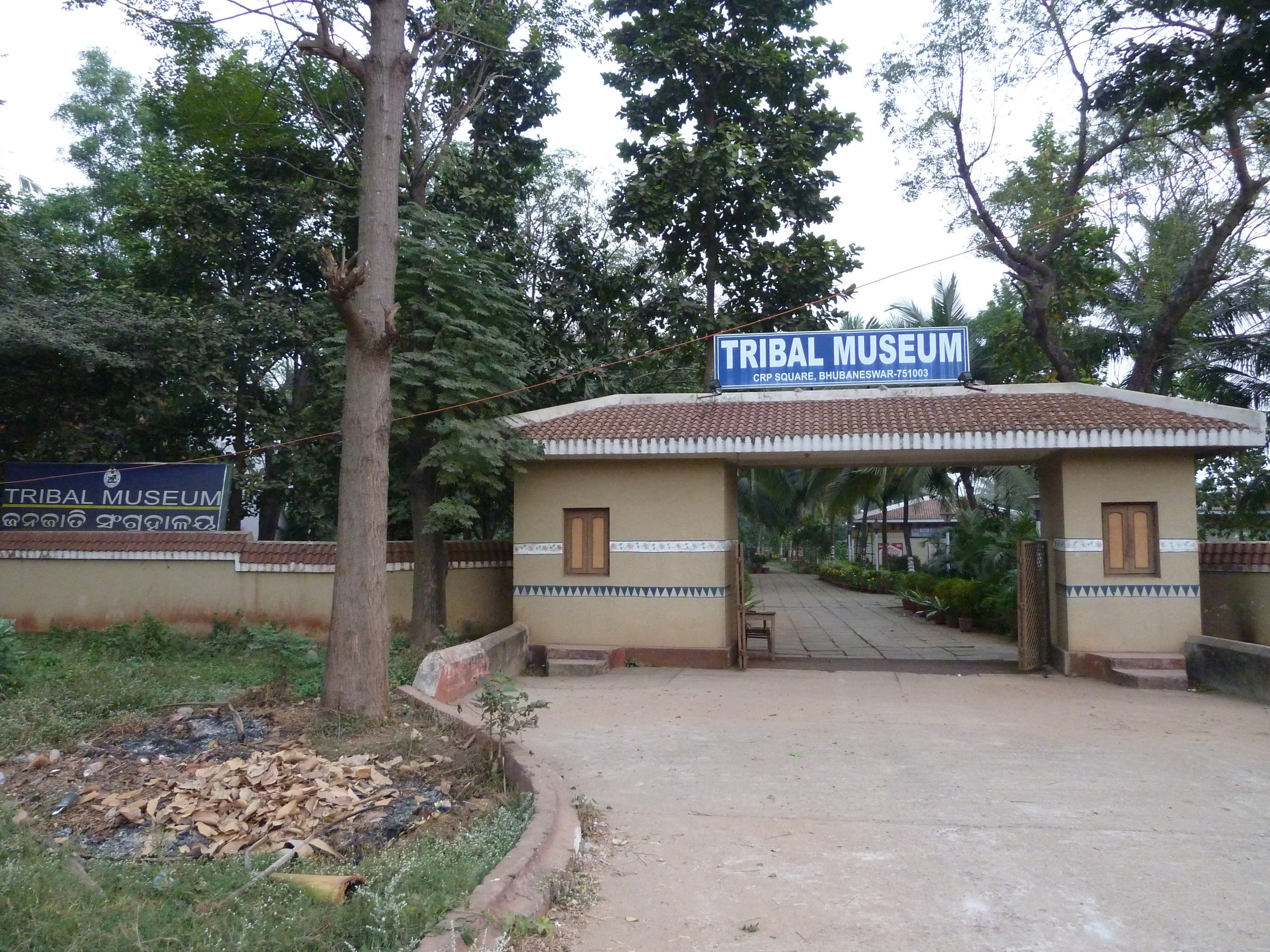 Most Popular Place To Visit In Bhubaneswar - Museum Of Tribal Arts And Artifacts