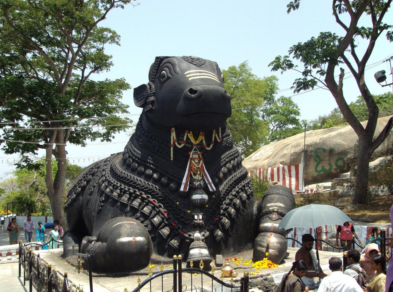 Best Attraction at Chamundi Hills In Mysore-Nandi Statue