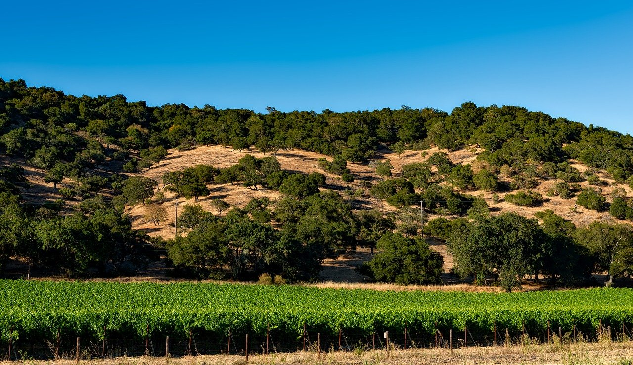 Most Beautiful Valley to Visit in California-Most Beautiful Valleys to Visit in California