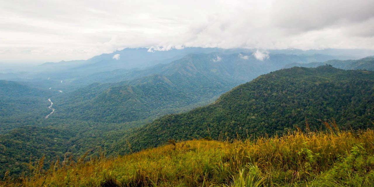 Neelimala View Point - Place to Visit in Wayanad