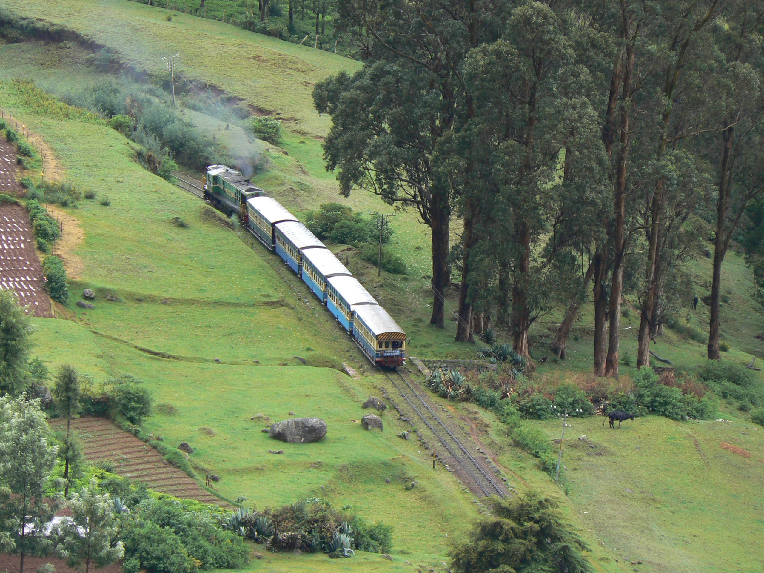 Top Ecotourism Destination In Tamil Nadu-Nilgiris