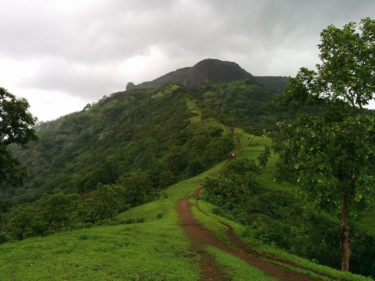 Amazing Place in Matheran-One Tree Hill Point