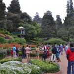 Ooty Botanical Garden - Enchanting Garden of Ooty
