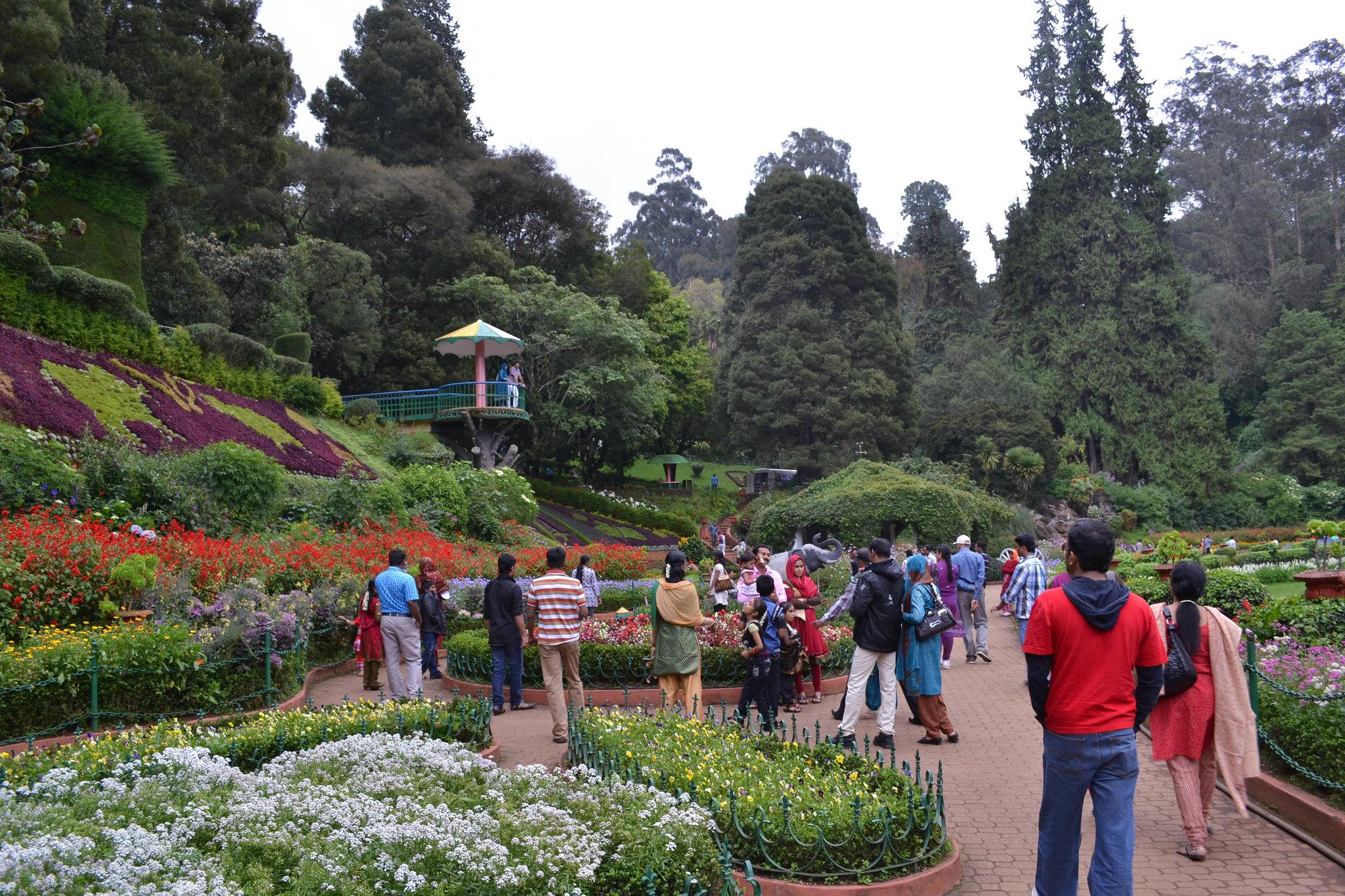 Ooty Botanical Garden - Enchanting Garden of Ooty