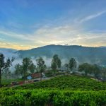 Ooty - Amazing Tourist Destination in South India
