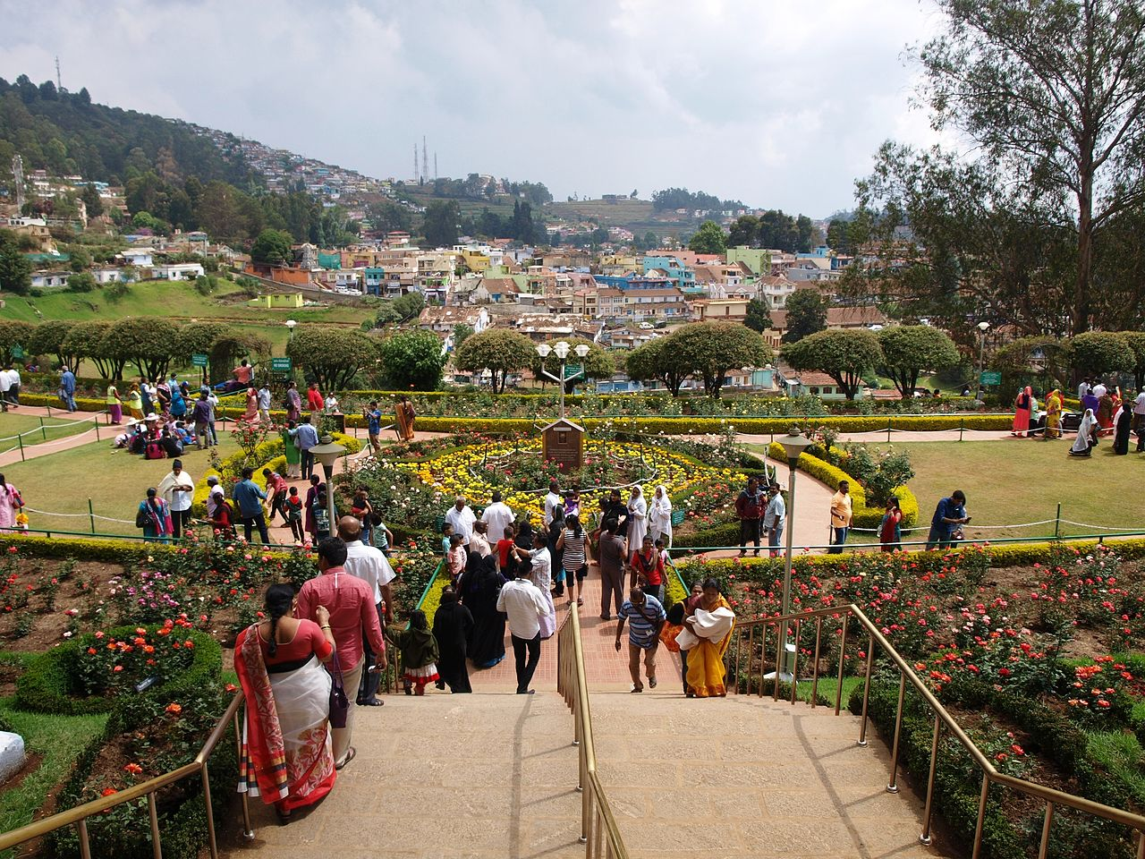 Must-Visit Place in Ooty, Ooty Rose Garden