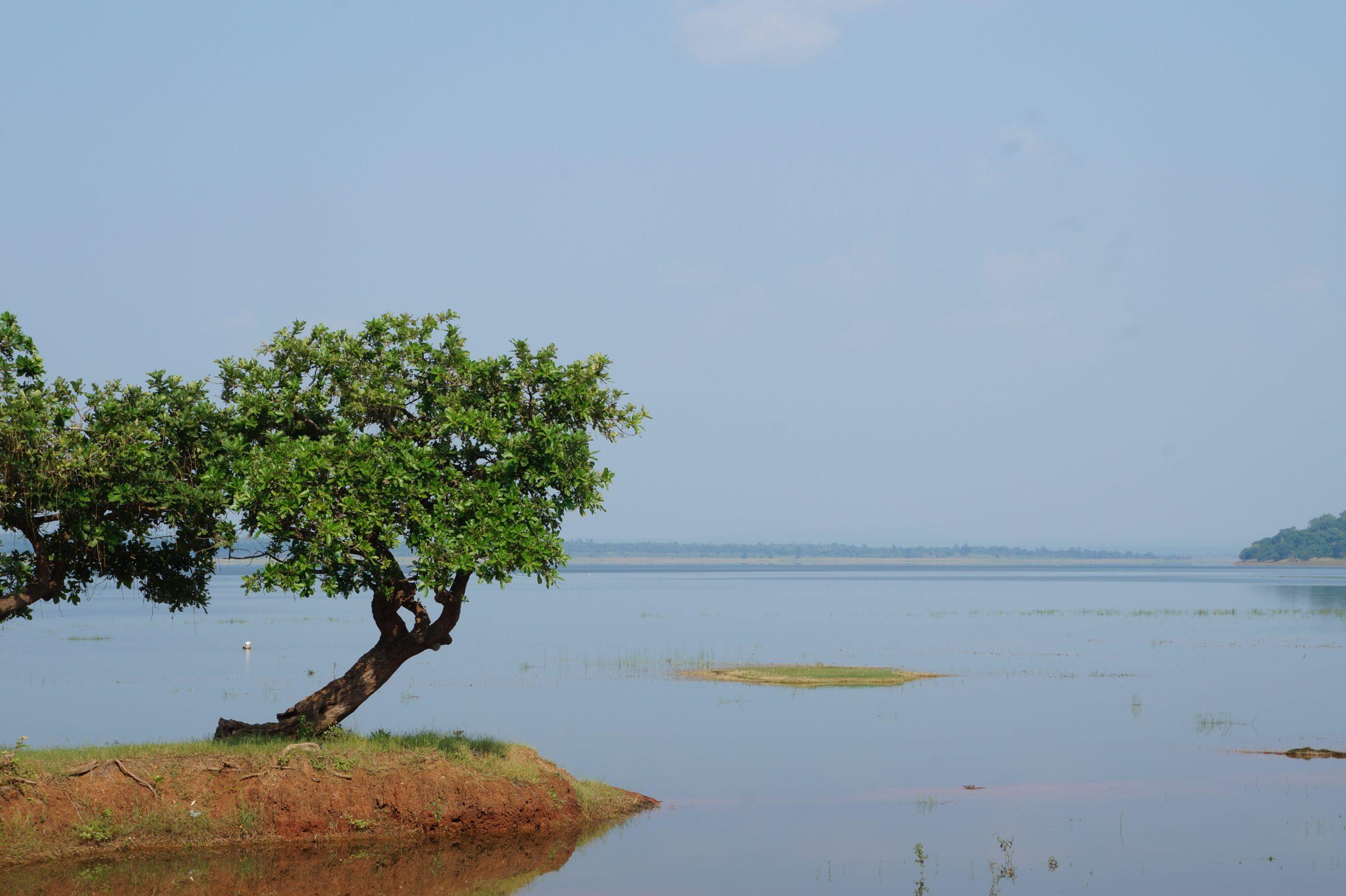 Pakhal Lake Place to Visit in Warangal