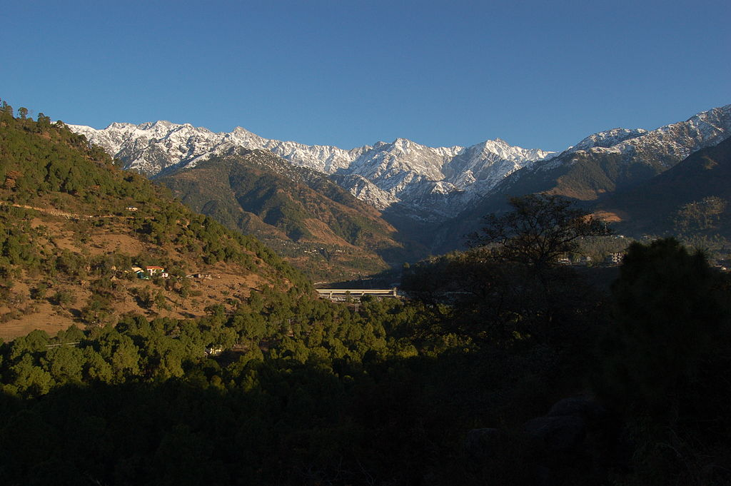 Palampur - Beautiful Hill City In The Kangra District Of Himachal Pradesh