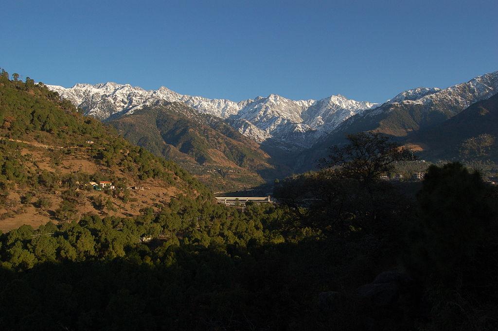 Palampur - Beautiful Hill City In The Kangra District Of Himachal Pradesh