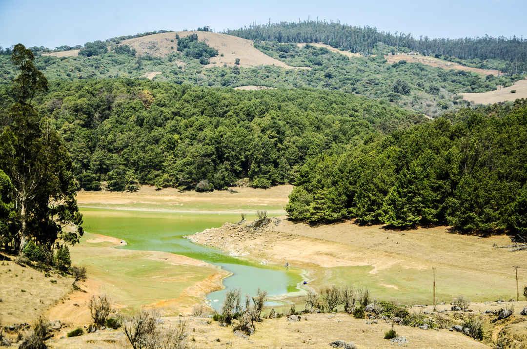 Incredible Trekking Destination in Ooty, Tamil Nadu-Parsons Dam