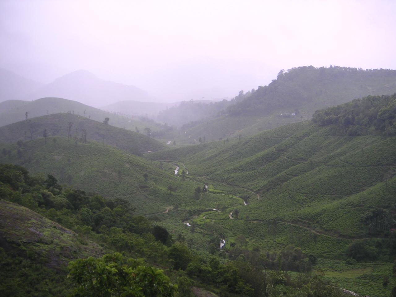 Peermedu Must-Visit Hill Station Within 500 Kms of Wayanad