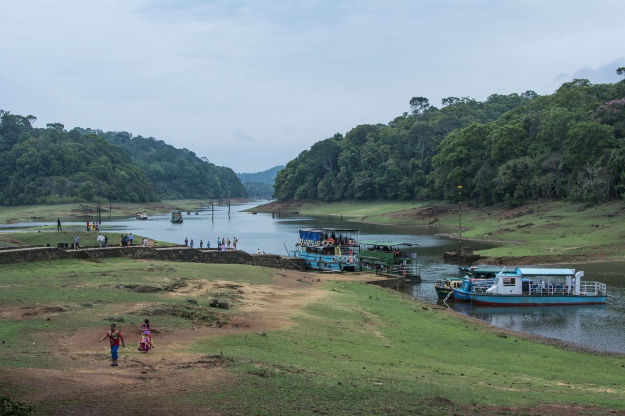 Incredible Wildlife sanctuary in Kerala-Periyar Wildlife Sanctuary in Thekkady
