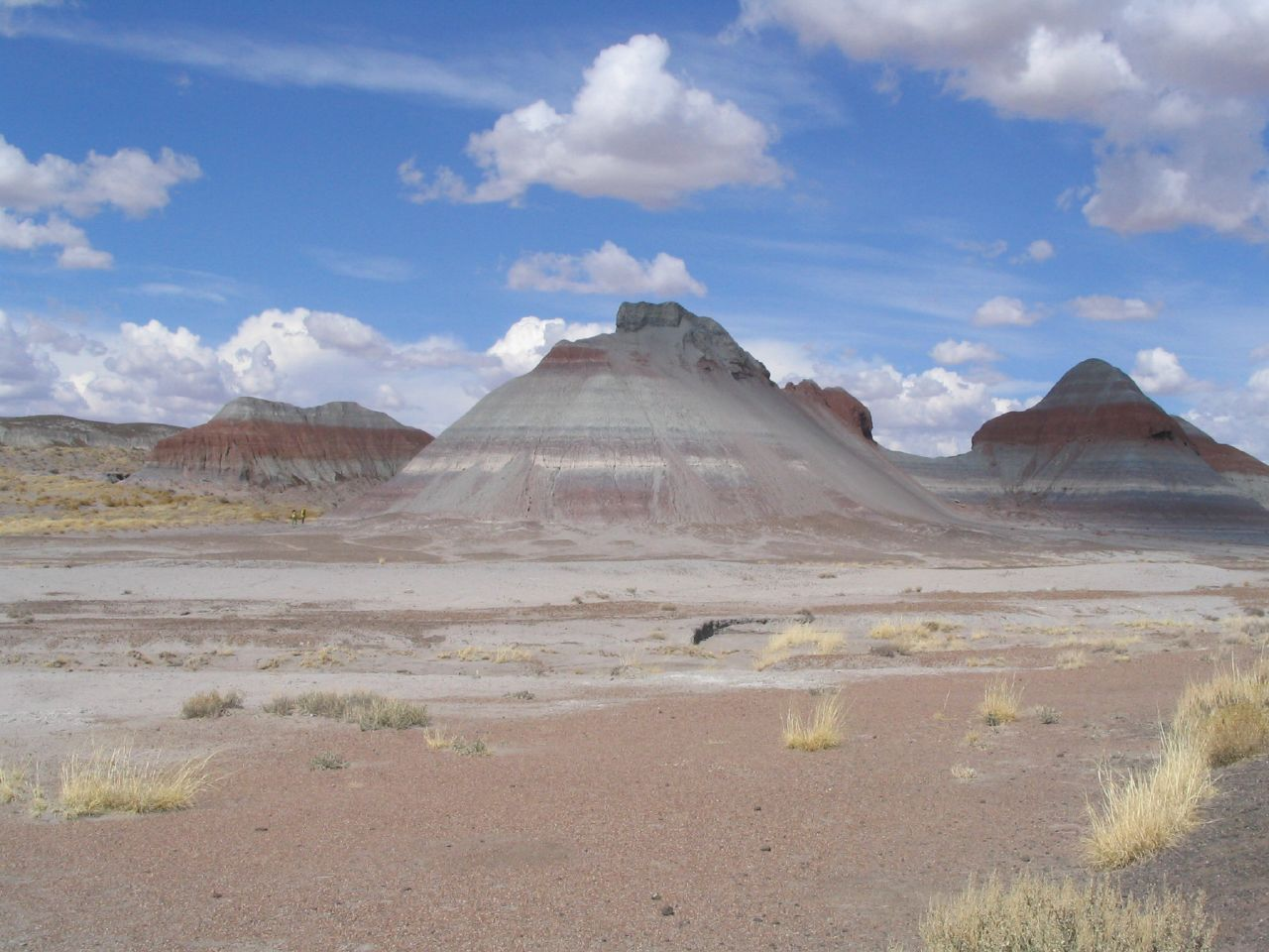 Best Place To Visit Arizona-Petrified Forest National Park