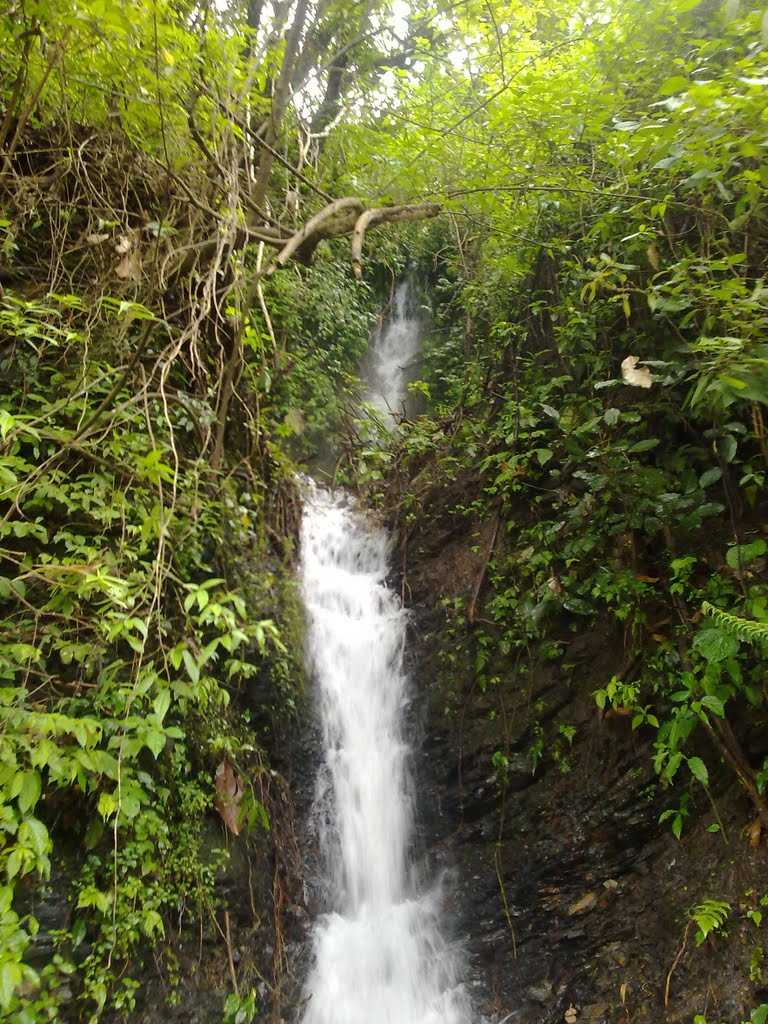 Attraction Place to Visit in Phek-Phek Waterfall