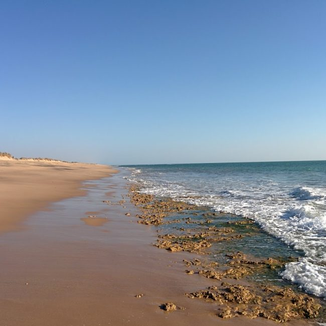 Visit Pingleshwar Beach