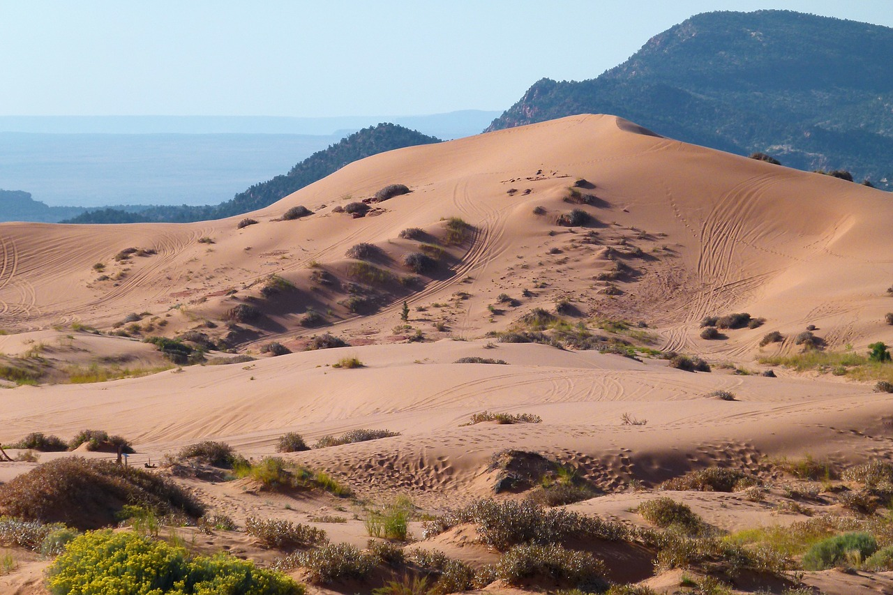 Top Place to Visit In Utah-Pink Sand Dunes State Park