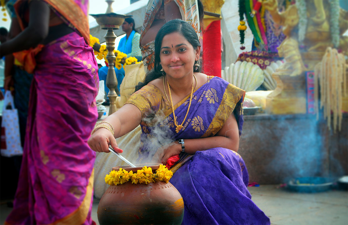 Pongal - Magnificent Local Festival Of Tamil Nadu