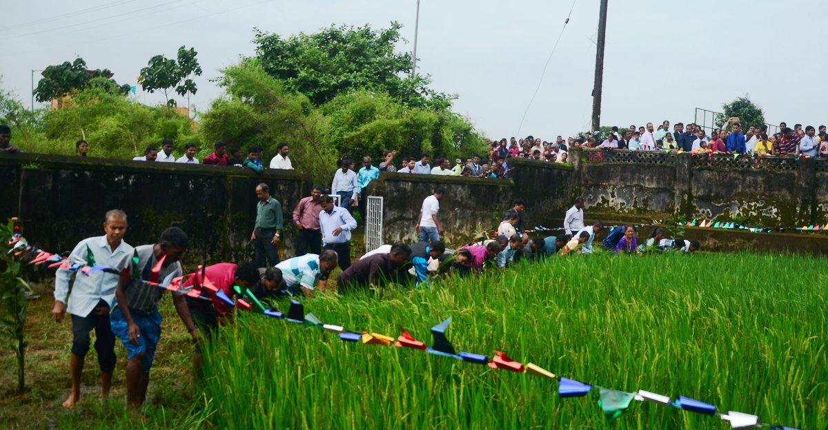 Popular Monsoon Festival in Goa-Ponsachem Fest