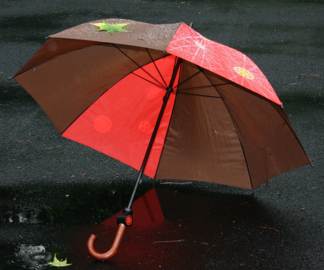 Rain Protection-Must-Have Things To Carry During Your Trip To Andaman