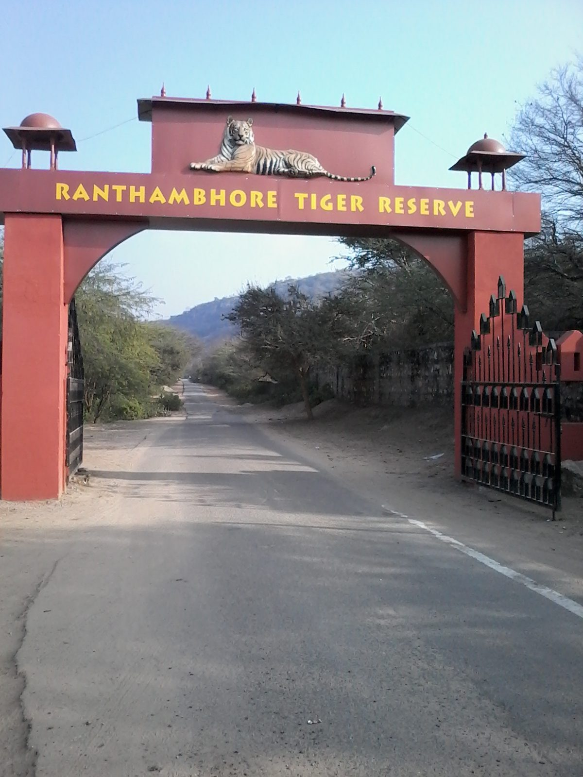 Top-Rated Place to Visit in Ranthambore-Ranthambore Tiger Reserve