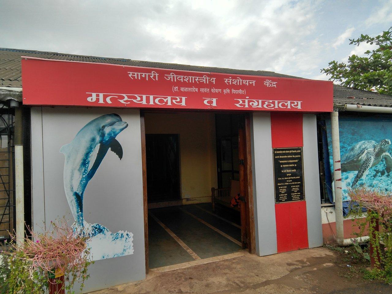 Best Place to Visit Near Jaigad Fort-Ratnagiri Marine Fishi Museum