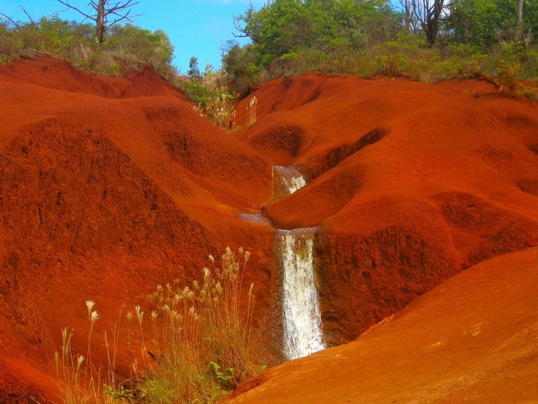 Red Dirt Waterfall - Place To Visit In And Around Waimea Canyon