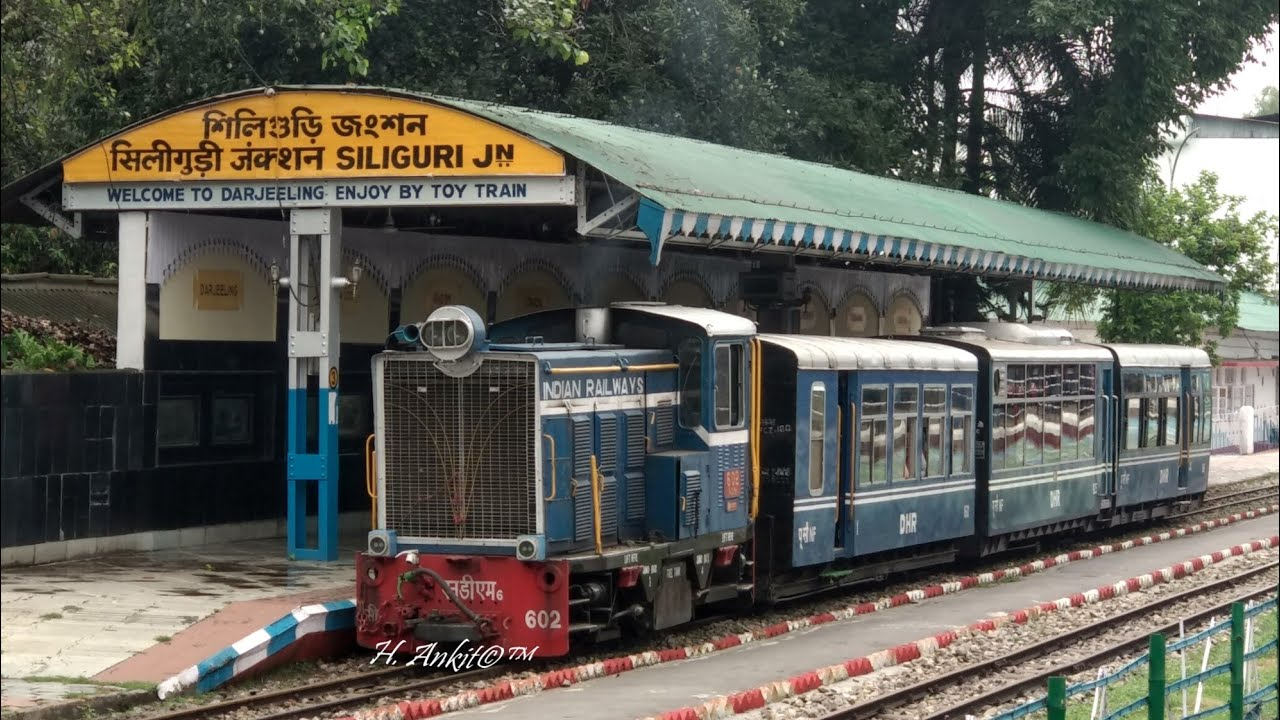 Top Things To Do in Siliguri - Riding Toy Train