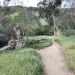 Spectacular Hiking Trails in Los Angeles For A Thrilling Adventure