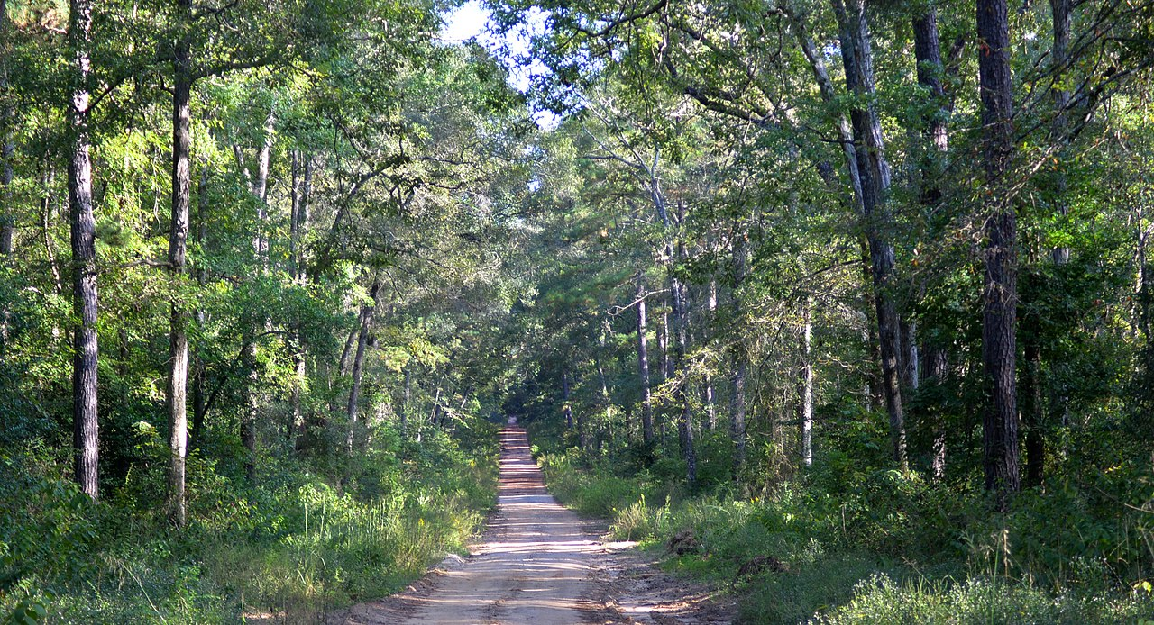 Attraction Place in Houston-Sam Houston National Forest