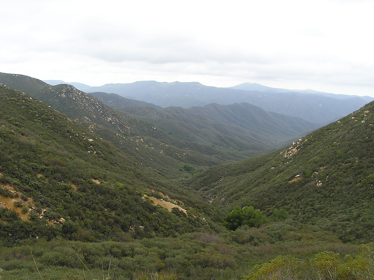 Top Place to Visit In The Santa Ana Mountain-San Mateo Canyon Wilderness