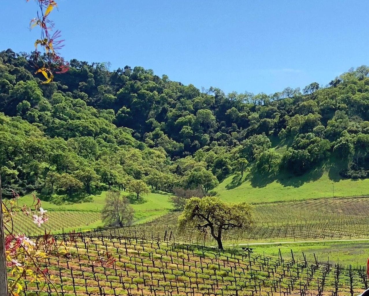 Popular Valley to Visit in California-Santa Clara Valley, California