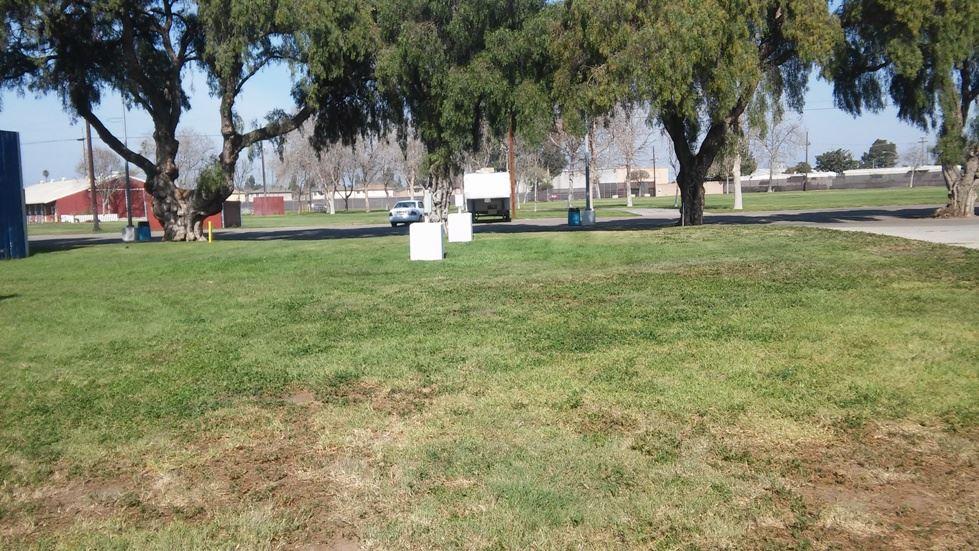 Have Fun at the Santa Maria Fairpark, Santa Maria