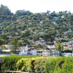 Top-Rated Tourist Attractions in Sausalito
